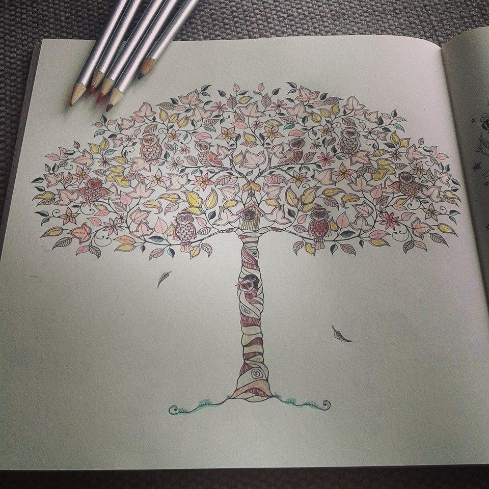 Kleurplaten Voor Volwassenen Mijn Geheime Tuin.Twee Ons Geluk Bij Iedere Bestelling Ontvang Je Een Mooie